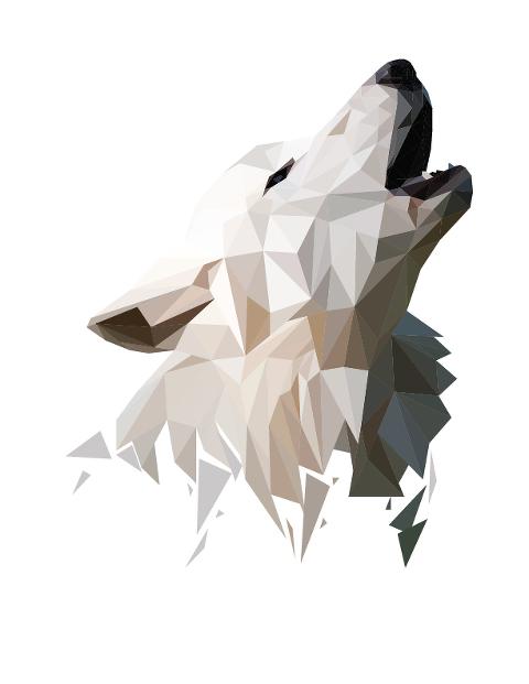 05_Evans_Animal-01